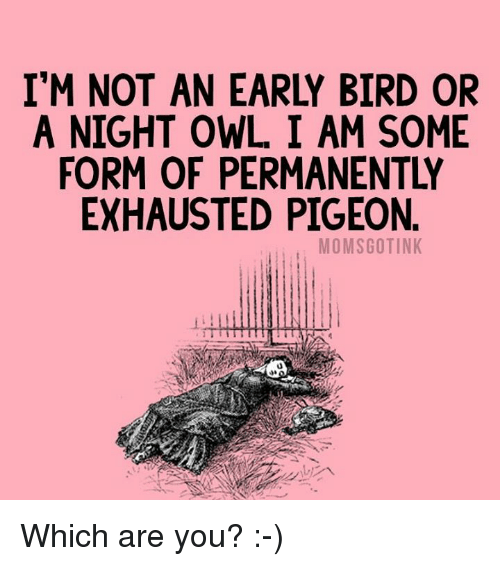 Exhausted Pigeon: I'M NOT AN EARLY BIRD OR  A NIGHT OWL I AM SOME  FORM OF PERMANENTLY  EXHAUSTED PIGEON  MOMSGOTINK Which are you? :-)