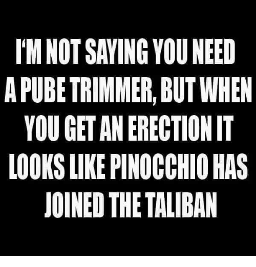 taliban: I'M NOT SAVING YOU NEED  A PUBE TRIMMER, BUT WHEN  YOU GET AN ERECTION IT  LOOKS LIKE PINOCCHIO HAS  JOINED THE TALIBAN