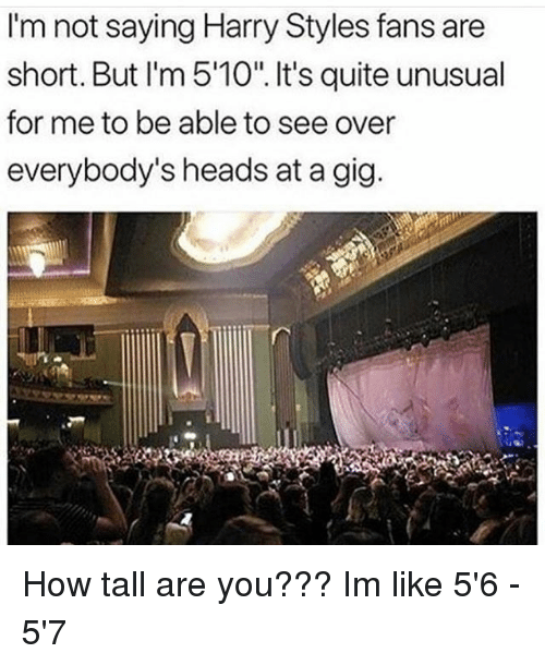 """short but: I'm not saying Harry Styles fans are  short. But I'm 5'10"""". It's quite unusual  for me to be able to see over  everybody's heads at a gig How tall are you??? Im like 5'6 - 5'7"""