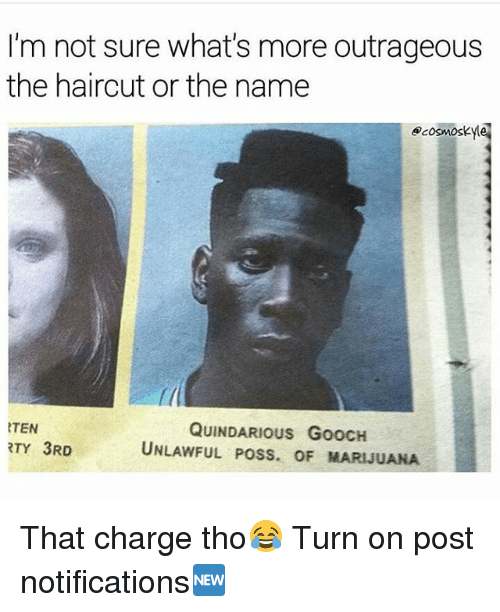 Haircut, Memes, and Marijuana: I'm not sure what's more outrageous  the haircut or the name  ecosmoskyle  f(  TEN  RTY 3RD  QUINDARIous GoOCH  UNLAWFUL POSS. OF MARIJUANA That charge tho😂 Turn on post notifications🆕