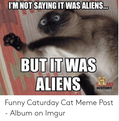 Caturday, Funny, and Meme: IM NOTSAYINGIT WASALIENS  ALIENS.  HISTORY