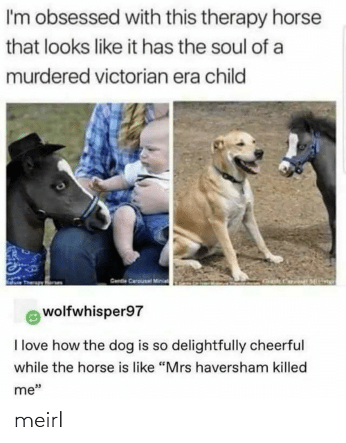 "child: I'm obsessed with this therapy horse  that looks like it has the soul of a  murdered victorian era child  Gende Carousal Minia  wolfwhisper97  I love how the dog is so delightfully cheerful  while the horse is like ""Mrs haversham killed  me"" meirl"