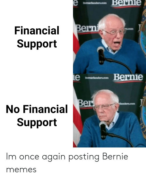 """2020 Presidential Campaign Meme Patch Bernie Sanders /"""" I Am Once Again Asking /"""""""