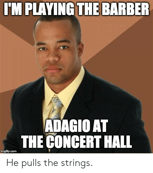 Barber, Advice Animals, and Com: I'M PLAYING THE BARBER  ADAGIO AT  THE CONCERT HALL  imgflip.com He pulls the strings.