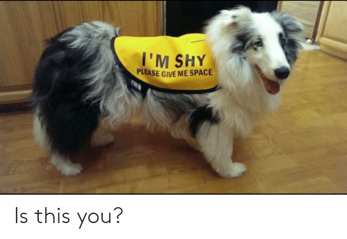 Give Me Space: I'M SHY  PLEASE GIVE ME SPACE Is this you?
