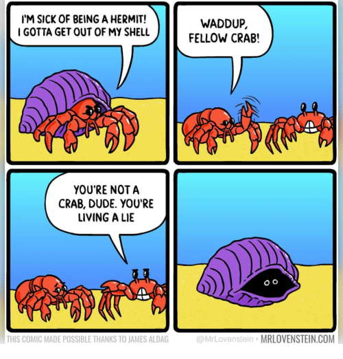 Dude, Memes, and Sick: IM SICK OF BEING A HERMIT!  IGOTTA GET OUT OF MY SHELL  WADDUP  FELLOW CRAB!  YOU'RE NOTA  CRAB, DUDE. YOU'RE  LIVING A LIE  O o  THIS COMIC MADE POSSIBLE THANKS TO JAMES ALDAG  @MrLovenstein MRLOVENSTEIN.COM