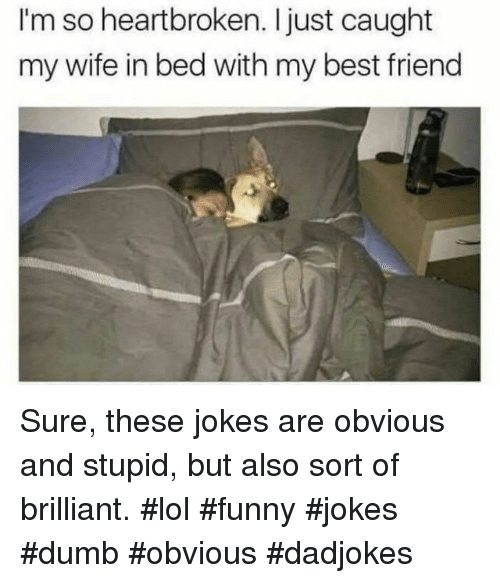 funny jokes: I'm so heartbroken. Ijust caught  my wife in bed with my best friend Sure, these jokes are obvious and stupid, but also sort of brilliant. #lol #funny #jokes #dumb #obvious #dadjokes