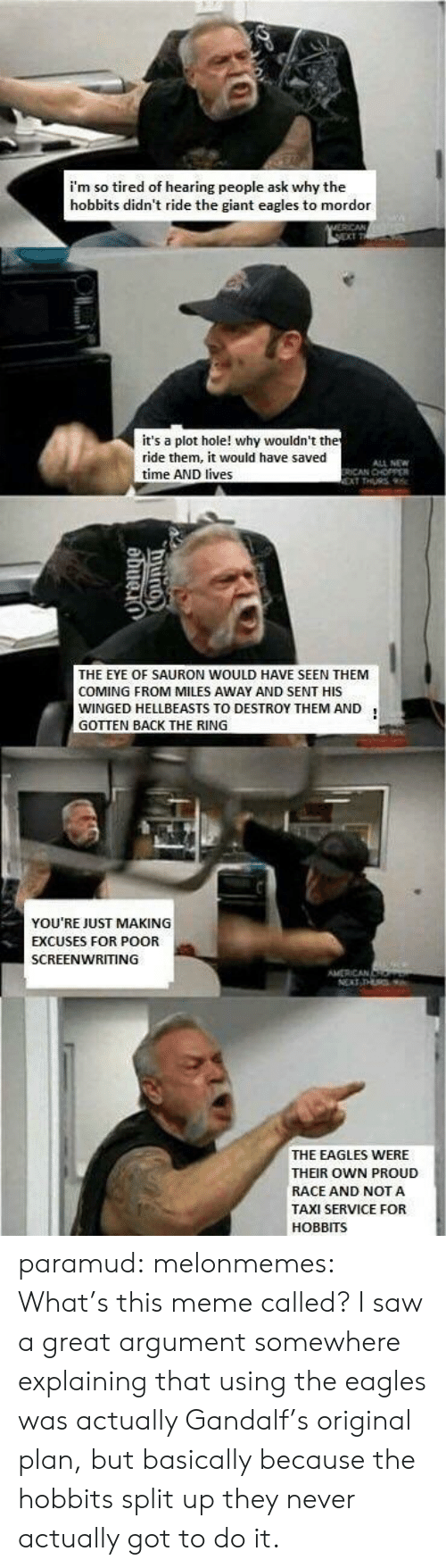 sauron: i'm so tired of hearing people ask why the  hobbits didn't ride the giant eagles to mordor  it's a plot hole! why wouldn't th  ride them, it would have saved  time AND lives  ALL NEW  ICAN CHOPPER  THE EYE OF SAURON WOULD HAVE SEEN THEM  COMING FROM MILES AWAY AND SENT HIS  WINGED HELLBEASTS TO DESTROY THEM AND1  GOTTEN BACK THE RING  YOU'RE JUST MAKING  EXCUSES FOR POOR  SCREENWRITING  AMERICAN  THE EAGLES WERE  THEIR OWN PROUD  RACE AND NOT A  TAXI SERVICE FOR  HOBBITS paramud:  melonmemes:  What's this meme called?  I saw a great argument somewhere explaining that using the eagles was actually Gandalf's original plan, but basically because the hobbits split up they never actually got to do it.