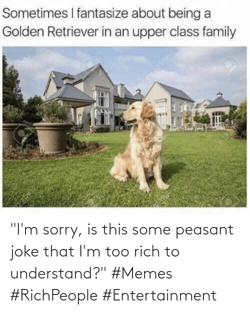 "entertainment: ""I'm sorry, is this some peasant joke that I'm too rich to understand?"" #Memes #RichPeople #Entertainment"
