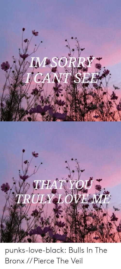 Love, Sorry, and Tumblr: IM SORRY  TCANT SEE   .THAT YOU  ULY LOVE ME punks-love-black:  Bulls In The Bronx // Pierce The Veil