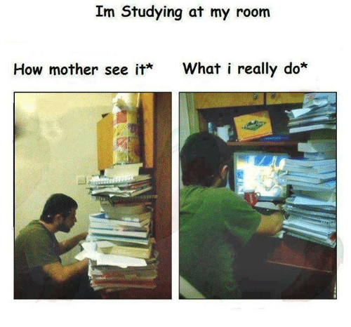 What I really do: Im Studying at my room  How mother see it  What i really do