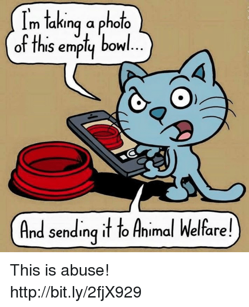 animal welfare: Im taking a photo  of ths em  bowl  And sending it to Animal Welfare! This is abuse!  http://bit.ly/2fjX929