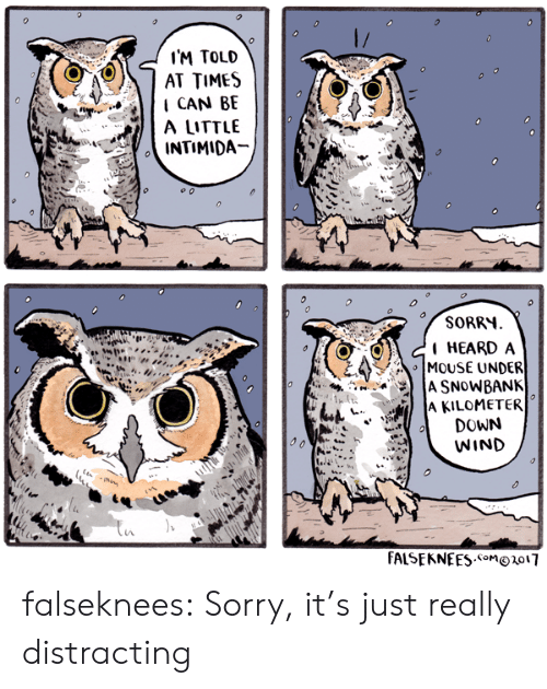 Distracting: I'M TOLD  AT TIMES  CAN BE  A LITTLE  INTIMIDA-  SORRH  HEARDA  :>이 MOUSE UNDER  A KILOMETER  DOWN  WIND  4  FALSEKNEES.on1o17 falseknees: Sorry, it's just really distracting