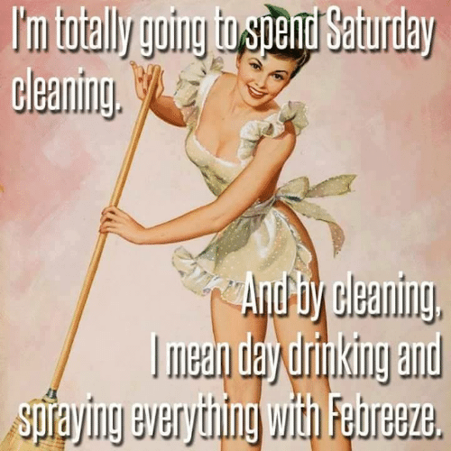 Dank, 🤖, and Day: I'm totally going tospend Saturday  cleaning  And ty cleaning  Гmеa day unking and  Spraying everything withi Febreeze
