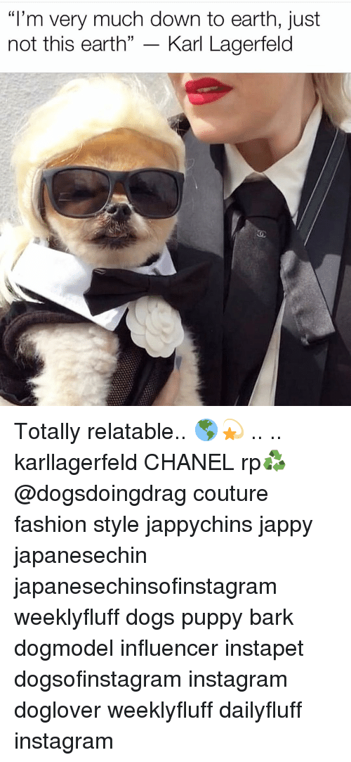 """karl lagerfeld: """"I'm very much down to earth, just  not this earth"""" - Karl Lagerfeld Totally relatable.. 🌎💫 .. .. karllagerfeld CHANEL rp♻️ @dogsdoingdrag couture fashion style jappychins jappy japanesechin japanesechinsofinstagram weeklyfluff dogs puppy bark dogmodel influencer instapet dogsofinstagram instagram doglover weeklyfluff dailyfluff instagram"""