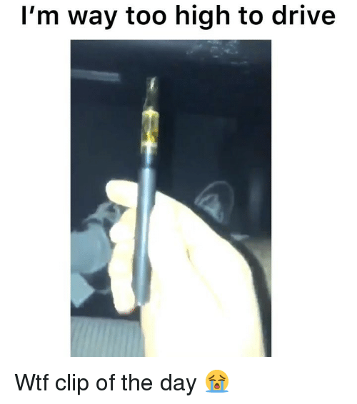 Funny, Wtf, and Drive: I'm way too high to drive Wtf clip of the day 😭