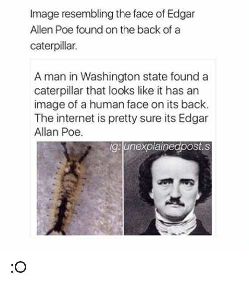 Resemblant: Image resembling the face of Edgar  Allen Poe found on the back of a  caterpillar.  A man in Washington state found a  caterpillar that looks like it has an  image of a human face on its back.  The internet is pretty sure its Edgar  Allan Poe.  ig unexplainegpostes :O