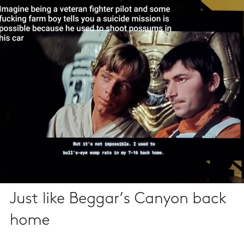 Back Home: Imagine being a veteran fighter pilot and some  fucking farm boy tells you a suicide mission is  possible because he used to shoot possums in  his car  But it's not impossible. I used to  bull's-eye womp rats in my T-16 back home. Just like Beggar's Canyon back home