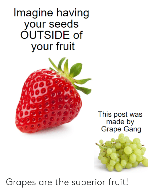 Gang, Superior, and Fruit: Imagine having  your seeds  OUTSIDE of  your fruit  This post was  made by  Grape Gang Grapes are the superior fruit!