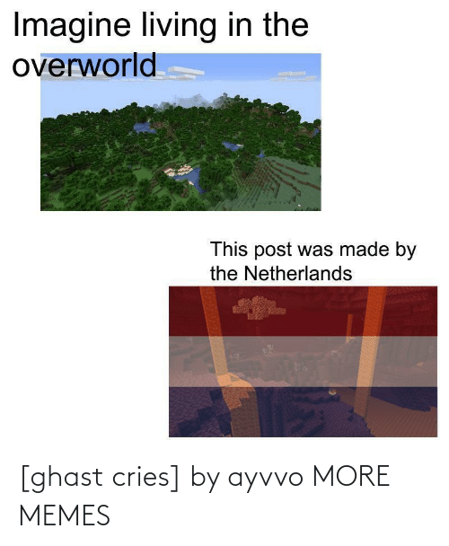 Cries: Imagine living in the  overworld  This post was made by  the Netherlands [ghast cries] by ayvvo MORE MEMES