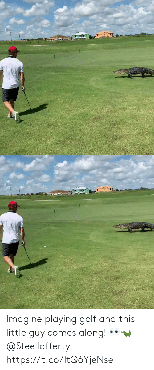 playing: Imagine playing golf and this little guy comes along! 👀🐊 @Steellafferty https://t.co/ltQ6YjeNse