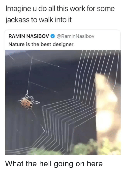 Nature Is