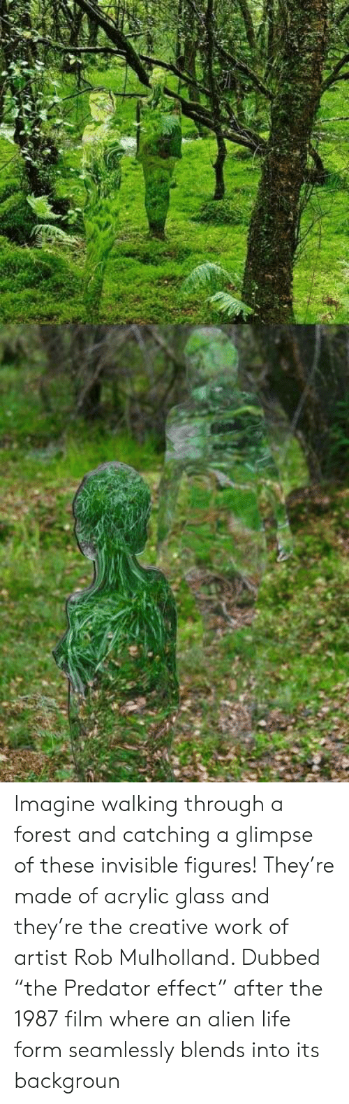 """dubbed: Imagine walking through a forest and catching a glimpse of these invisible figures! They're made of acrylic glass and they're the creative work of artist Rob Mulholland. Dubbed """"the Predator effect"""" after the 1987 film where an alien life form seamlessly blends into its backgroun"""