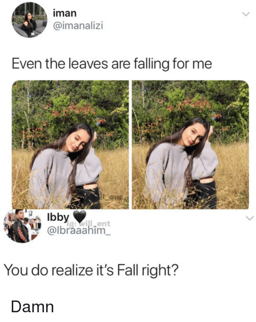 iman: iman  @imanalizi  Even the leaves are falling for me  g:will.ent  @lbraaahim  You do realize it's Fall right? Damn