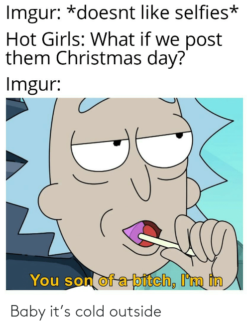 Im In: Imgur: *doesnt like selfies*  Hot Girls: What if we post  them Christmas day?  Imgur:  You son of a-bitch, I'm in Baby it's cold outside