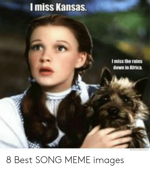 Best Meme Songs: Imiss Kansas.  Imiss the rains  down in Airica 8 Best SONG MEME images