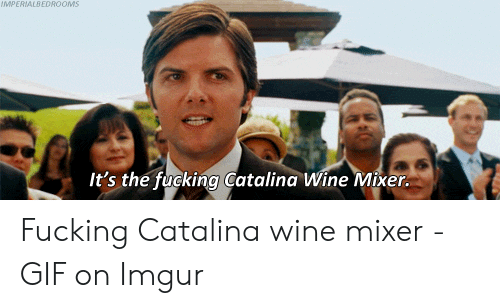 step brothers catalina wine mixer gif