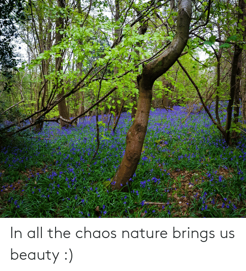 chaos: In all the chaos nature brings us beauty :)