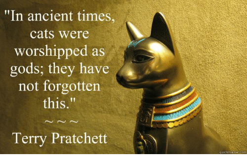 """Terries: """"In ancient times,  cats were  worshipped as  gods: they have A  not forgotten  this  Terry Pratchett  quick menne com"""