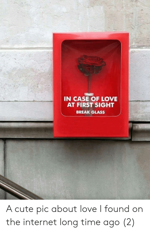 Cute, Internet, and Love: IN CASE OF LOVE  AT FIRST SIGHT  BREAK GLASS A cute pic about love I found on the internet long time ago (2)