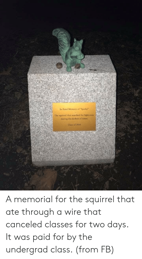 """Memorial: In Fond Memory of """"Sparky""""  The squirrel that searched for light even  during the darkest of times  Class of 2018 A memorial for the squirrel that ate through a wire that canceled classes for two days. It was paid for by the undergrad class. (from FB)"""