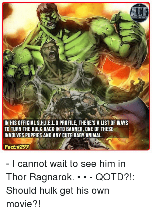 Memes, Puppies, and Hulk: IN HIS OFFICIAL S.H.I.E.L.D PROFILE, THERE'S A LIST OF WAYS  TO TURN THE HULK BACK IN TO BANNER, ONE OF THESE  INVOLVES PUPPIES AND ANY CUTE BABY ANIMAL.  Fact - I cannot wait to see him in Thor Ragnarok. • • - QOTD?!: Should hulk get his own movie?!