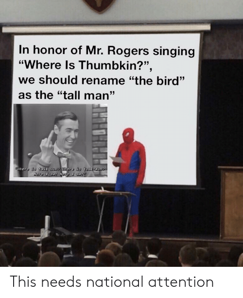 Mr Rogers and Mr Rogers Meme on awwmemes com