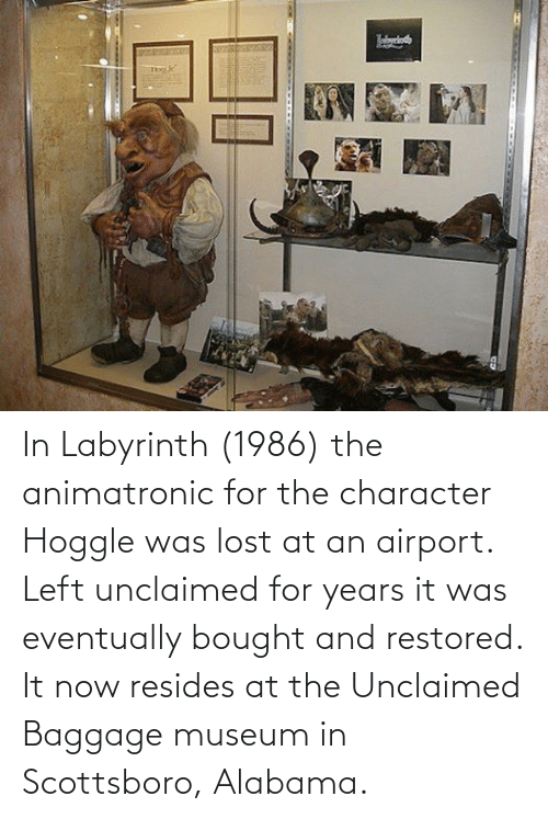 Labyrinth: In Labyrinth (1986) the animatronic for the character Hoggle was lost at an airport. Left unclaimed for years it was eventually bought and restored. It now resides at the Unclaimed Baggage museum in Scottsboro, Alabama.