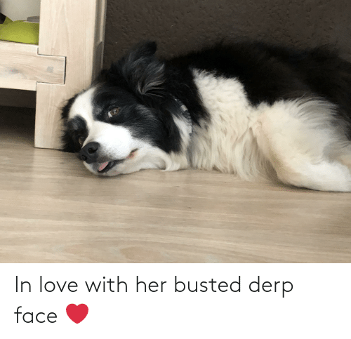 Aww Memes: In love with her busted derp face ❤️