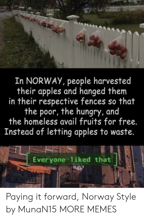 hanged: In NORWAY, people harvested  their apples and hanged them  in their respective fences so that  the poor, the hungry, and  the homeless avail fruits for free.  Instead of letting apples to waste.  Everyone liked that Paying it forward, Norway Style by MunaN15 MORE MEMES
