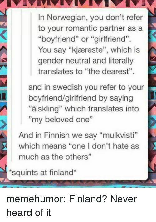 """Tumblr, Blog, and Http: In Norwegian, you don't refer  to your romantic partner asa  """"boyfriend"""" or """"girlfriend"""".  You say """"kjæreste"""", which is  gender neutral and literally  translates to """"the dearest""""  and in swedish you refer to your  """"älskling"""" which translates into  boyfriend/girlfriend by saying  """"my beloved one""""  And in Finnish we say """"mulkvisti""""  which means """"one I don't hate as  much as the others""""  squints at finland* memehumor:  Finland? Never heard of it"""