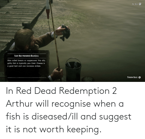 red dead: In Red Dead Redemption 2 Arthur will recognise when a fish is diseased/ill and suggest it is not worth keeping.