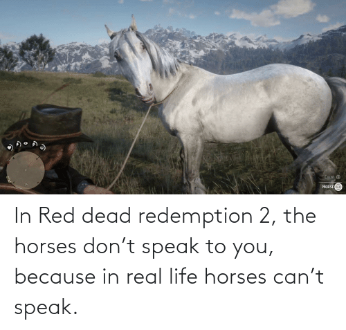 red dead: In Red dead redemption 2, the horses don't speak to you, because in real life horses can't speak.