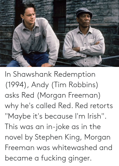"""freeman: In Shawshank Redemption (1994), Andy (Tim Robbins) asks Red (Morgan Freeman) why he's called Red. Red retorts """"Maybe it's because I'm Irish"""". This was an in-joke as in the novel by Stephen King, Morgan Freeman was whitewashed and became a fucking ginger."""
