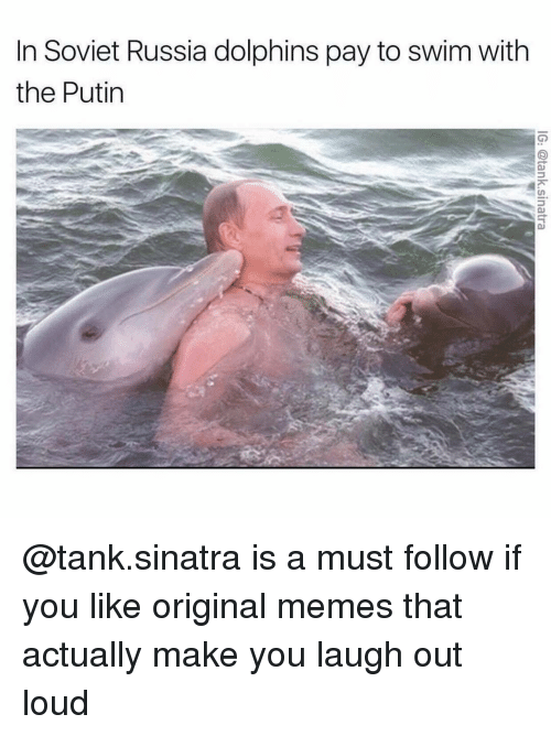soviet russia: In Soviet Russia dolphins pay to swim with  the Putin @tank.sinatra is a must follow if you like original memes that actually make you laugh out loud