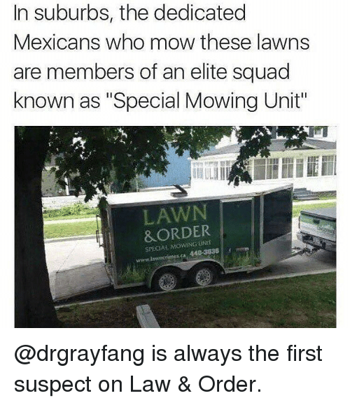 "Memes, Law & Order, and 🤖: In suburbs, the dedicated  Mexicans who mow these lawns  are members of an elite squad  known as ""Special Mowing Unit""  LAWN  &ORDER  SPECIAL @drgrayfang is always the first suspect on Law & Order."