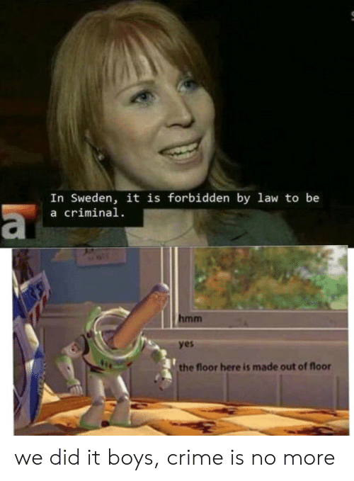 Crime, Sweden, and Boys: In Sweden, it is forbidden by law to be  a criminal  a  hmm  yes  the floor here is made out of floor we did it boys, crime is no more