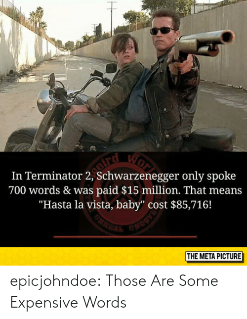"""Tumblr, Blog, and Terminator: In Terminator 2, Schwarzenegger only spoke  700 words & was paid $15 million. That means  """"Hasta la vista, baby"""" cost $85,716!  THE META PICTURE epicjohndoe:  Those Are Some Expensive Words"""