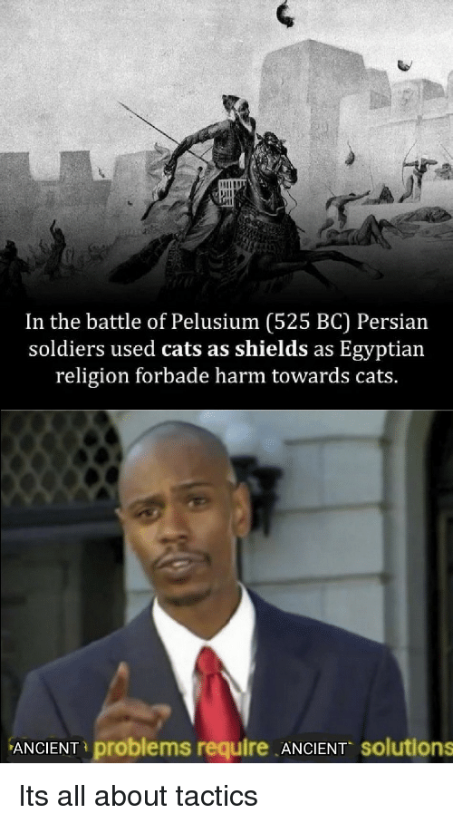 Cats, Soldiers, and Persian: In the battle of Pelusium (525 BC) Persian  soldiers used cats as shields as Egyptian  religion forbade harm towards cats.  ANCIENT problems require ANCIENT solutions Its all about tactics