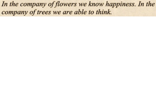 Flowers: In the company of flowers we know happiness. In the  company of trees we are able to think.
